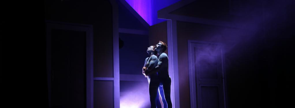 Photograph from Cesky - An Enchanted Realm - lighting design by Andy Webb