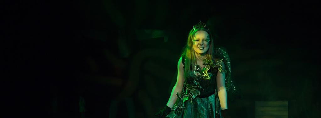 Photograph from Jack and the Beanstalk - lighting design by Rachel Cleary