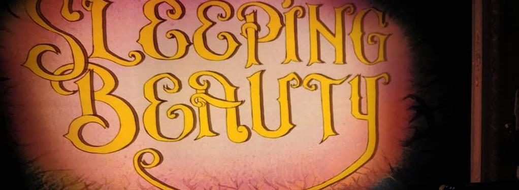 Photograph from Sleeping Beauty - Pantomine - lighting design by rohanmcdermott