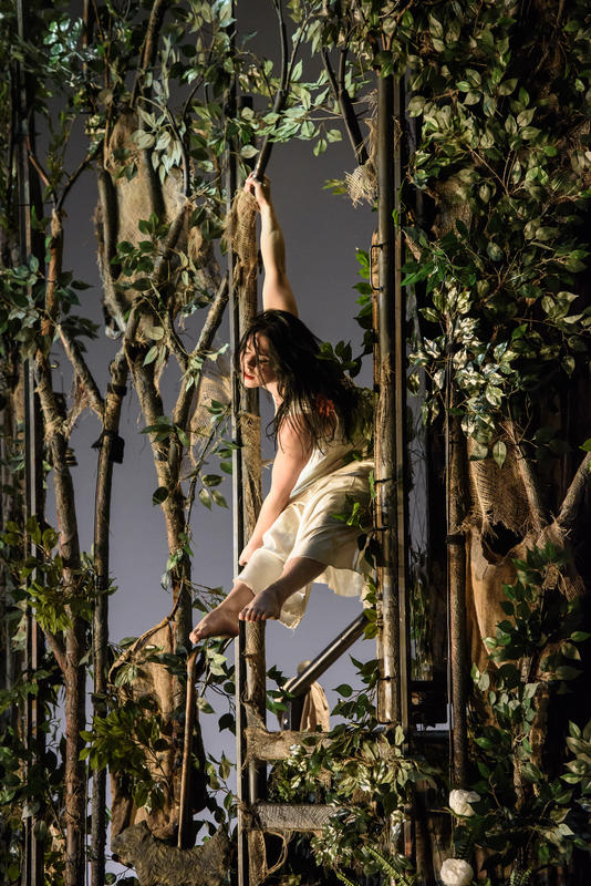 Photograph from Snow White - lighting design by Malcolm Rippeth