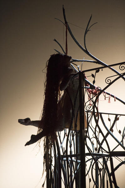 Photograph from Rapunzel - lighting design by Malcolm Rippeth