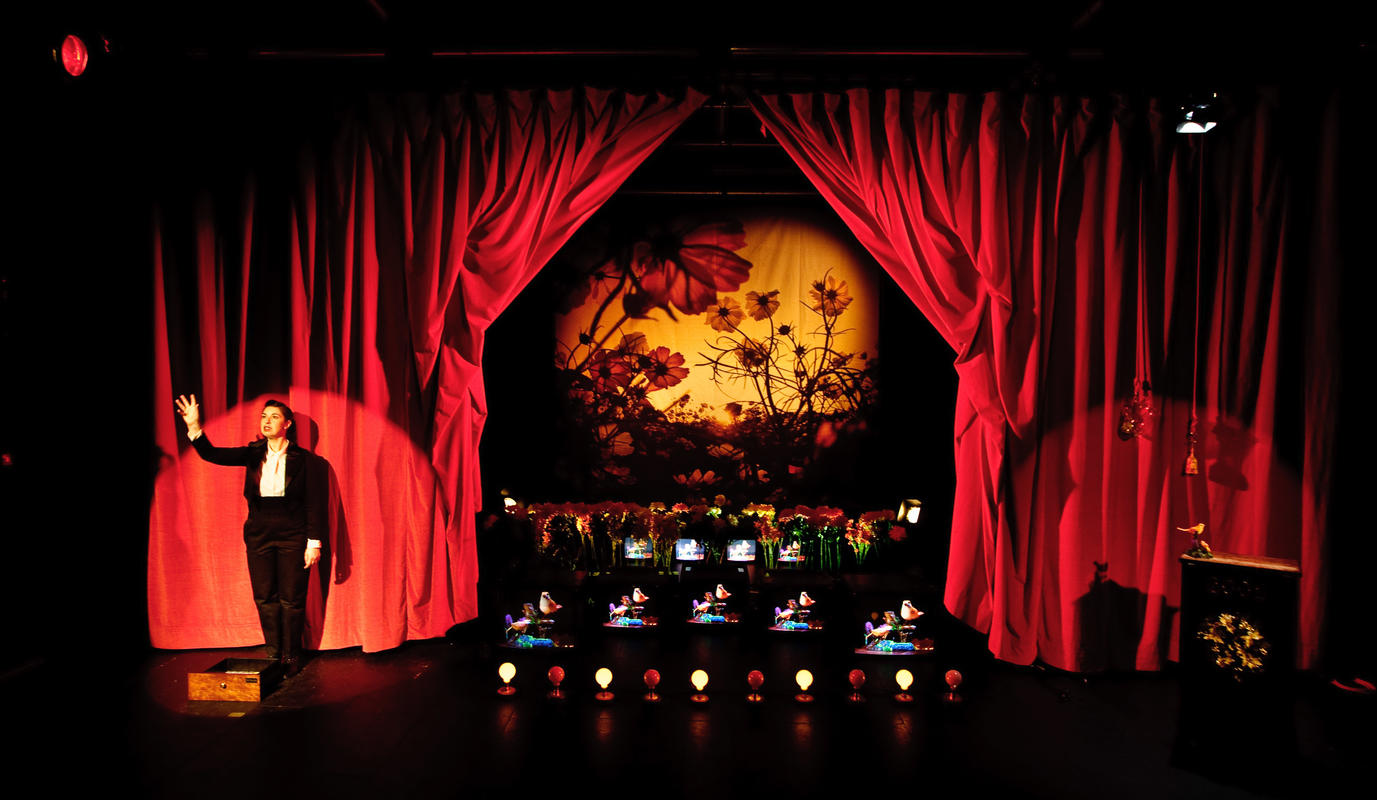 Photograph from Rat Rose Bird - lighting design by Marty Langthorne