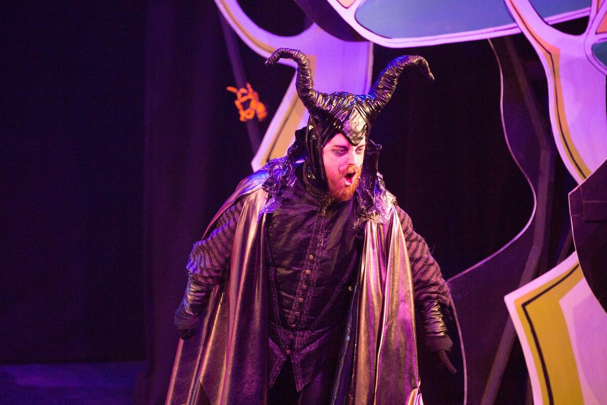 Photograph from Sleeping Beauty - lighting design by James McFetridge