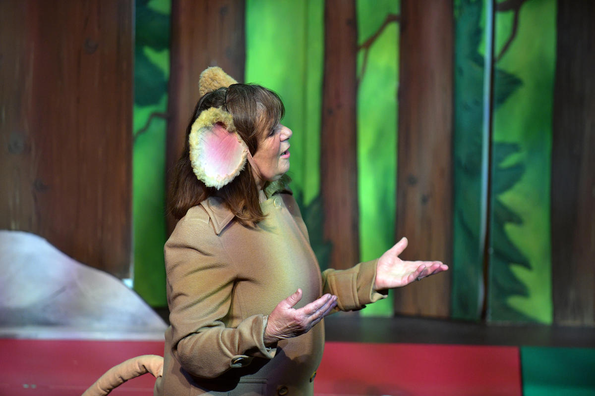 Photograph from The Gruffalo, The Witch and The Warthog with Julia Donaldson - lighting design by Louise Gregory