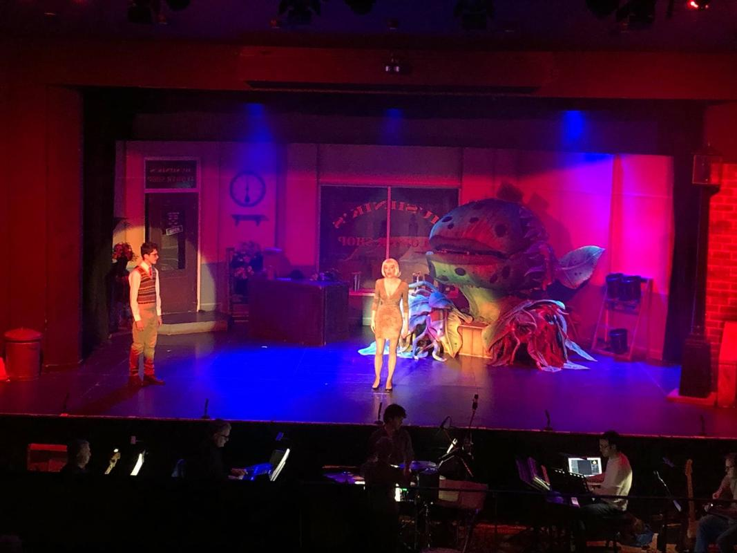 Photograph from Little Shop Of Horrors! - lighting design by HeleneSmithLx