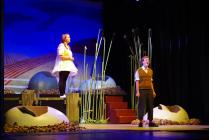 Photograph from Honk! - lighting design by Eric Lund