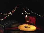 Photograph from Corina Pavlova and the Lion's Roar - lighting design by Katy Morison