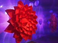 Photograph from Neon Garden - lighting design by Matthew Haskins