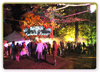 Photograph from Red Bull Enchanted Forest - lighting design by Pete Watts