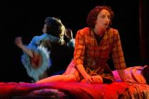 Photograph from The Wooden Frock - lighting design by Alex Wardle