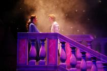 Photograph from Disney's Beauty and the Beast - lighting design by Peter Vincent