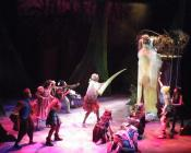 Photograph from Red Riding Hood - lighting design by Charlie Lucas