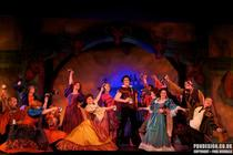 Photograph from Beauty and the Beast - lighting design by Pete Watts