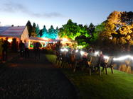 Photograph from Private party - lighting design by Pete Watts