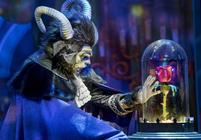 Photograph from Beauty and the Beast - lighting design by Matthew Clutterham