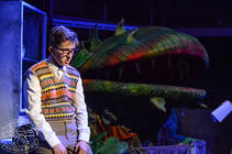 Photograph from Little Shop of Horrors - lighting design by Nigel Lewis