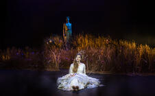 Photograph from A Midsummer Nights Dream - Lighting Designer - lighting design by Harry Owen