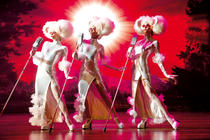 Photograph from SHREK Das Musical - lighting design by Andrew Voller
