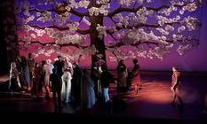 Photograph from The Tale of Januarie - lighting design by Sally McCulloch