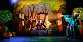 Photograph from Rapunzel The Musical - lighting design by George Bach