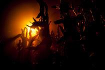 Photograph from Goosebumps Alive - lighting design by Charlie Morgan Jones